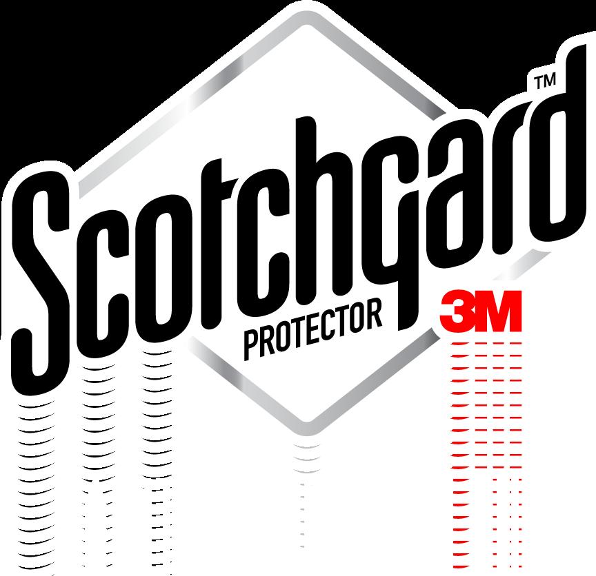 3M Paint Protection Film